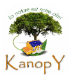 Kanopy transparent 100x110